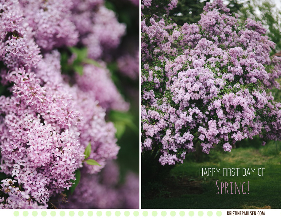 Loving the Lilacs – {Happy First Day of Spring, Missoula!}