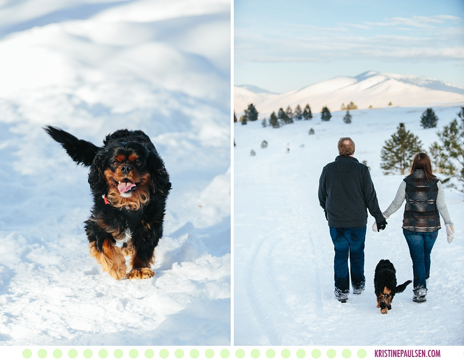 Margaret, Scott + Danforth Quayle :: Missoula Pet and Family Photos - Photos by Kristine Paulsen Photography