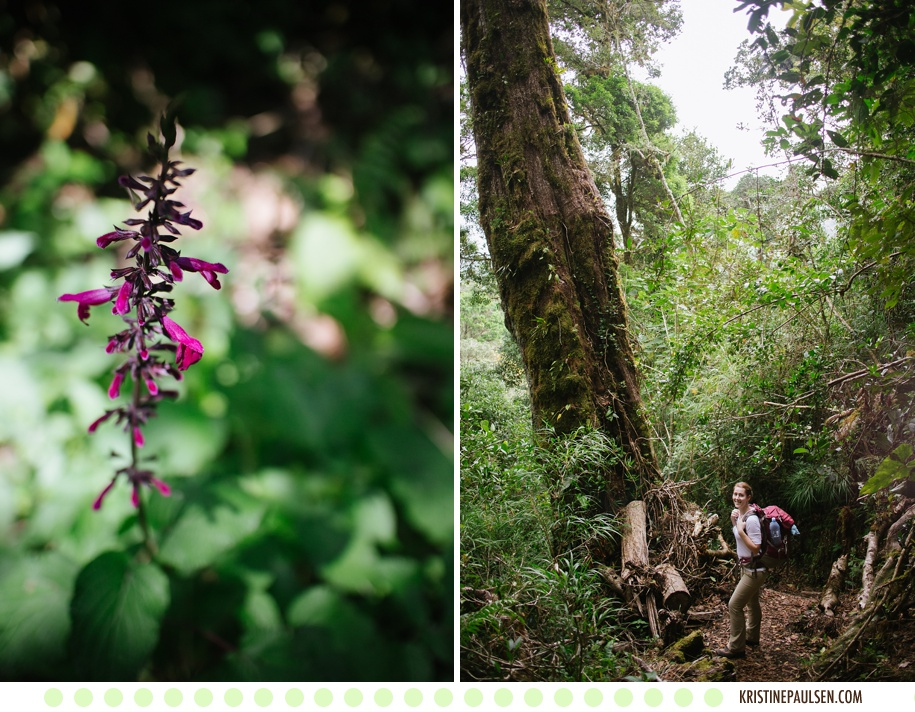 Traveling to Costa Rica and Panama – {It's a Jungle out There}